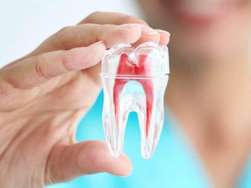 Eryaman Diş Hastanesi ve Kapsamlı Hizmetler